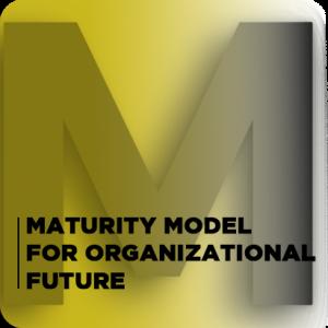 TOWARDS A MATURITY MODEL FOR ORGANIZATIONAL FUTURE2